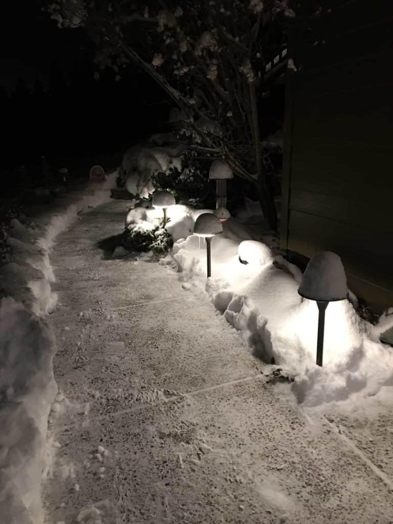 Coastal snow path 33401649136 8b702ac07b o 3